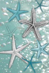 Starfish Bubbles by Diane Stimson