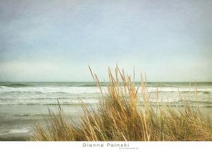 Sea Grasses 2 by Dianne Poinski