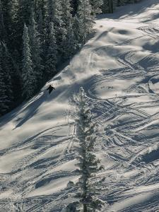 Skier on the Powder Slopes of Aspen by Dick Durrance