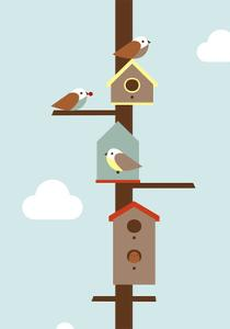 Birdhouses by Dicky Bird