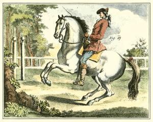Equestrian Training II by Diderot