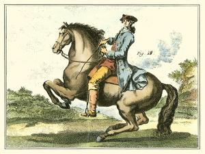 Equestrian Training IV by Diderot