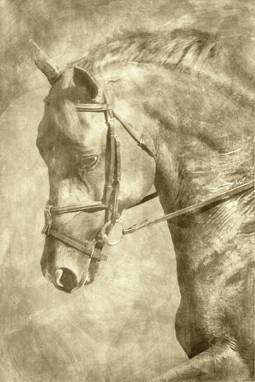 Diego II-Alan Hausenflock-Art Print