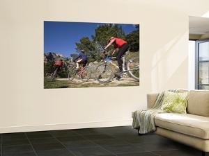 Mountain Bikers by Diego Lezama