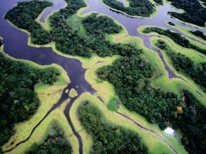 Overhead of Rio Negro by Diego Lezama