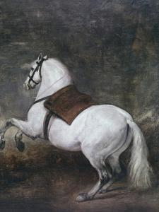 White Horse by Diego Velazquez