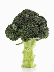 A Head of Broccoli by Dieter Heinemann