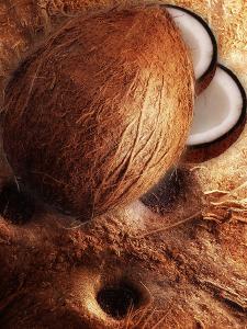 Artistically Arranged Still Life with Coconuts by Dieter Heinemann