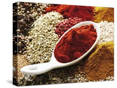 Paprika Powder in Porcelain Spoon on Assorted Spices