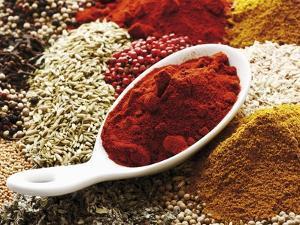 Paprika Powder in Porcelain Spoon on Assorted Spices by Dieter Heinemann