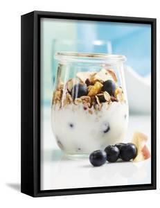 Yoghurt with Muesli, Blueberries, Apple and Dried Fruit by Dieter Heinemann
