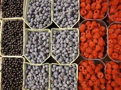 Different Berries at the Outdoor Market, Stockholm, Sweden-Nancy & Steve Ross-Photographic Print