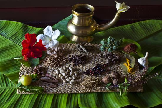 Different Indian Spices on Display at Swaswara, Karnataka, India, Asia-Thomas L-Photographic Print