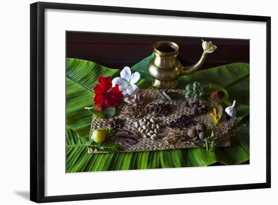 Different Indian Spices on Display at Swaswara, Karnataka, India, Asia-Thomas L-Framed Photographic Print