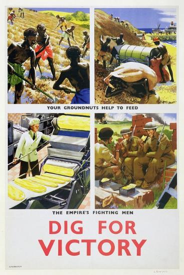'Dig for Victory', propaganda poster for Britain's African colonies, c1940-Unknown-Giclee Print
