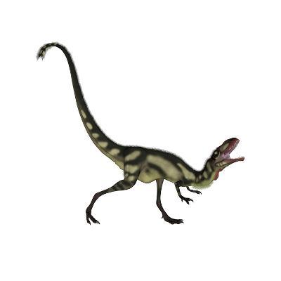 Dilong Dinosaur Roaring-Stocktrek Images-Art Print