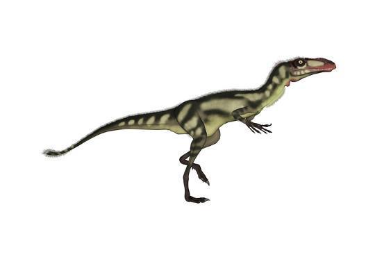 Dilong Dinosaur-Stocktrek Images-Art Print