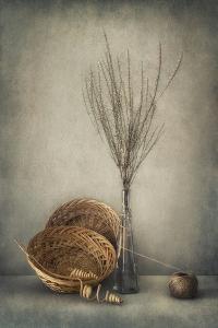 Almost Autumn... by Dimitar Lazarov -