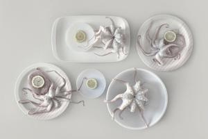 Octopus by Dimitar Lazarov -