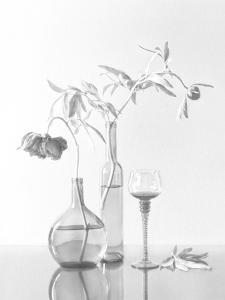 Still Life With Peonies by Dimitar Lazarov -
