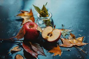 Autumn Rain and Apples by Dina Belenko
