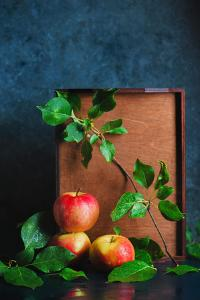 Autumn Still Life with Apples by Dina Belenko