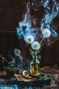 Smoakin' Summer by Dina Belenko