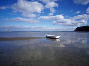 Dinghy on the Beach, Auckland, New Zealand