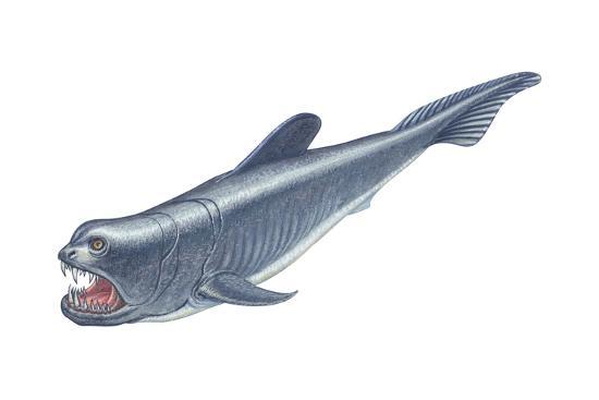Dinichthys, Fishlike Animal, Fossil, Fishes-Encyclopaedia Britannica-Art Print