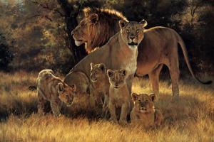 Pride's Proud Family by Dino Paravano