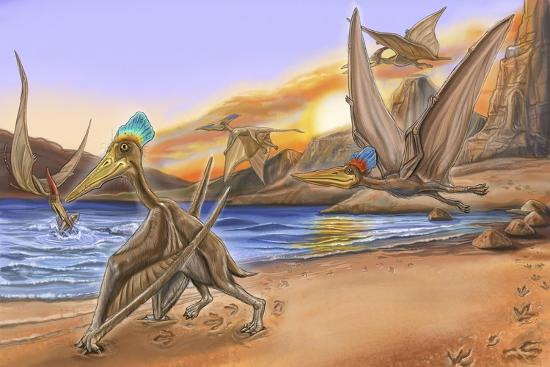 Dino Tracks 6-Cathy Morrison Illustrates-Giclee Print