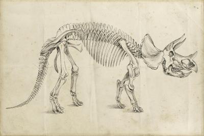 Dinosaur Study II-Ethan Harper-Art Print