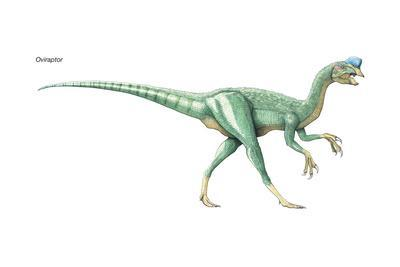 https://imgc.artprintimages.com/img/print/dinosaur_u-l-q135ikp0.jpg?p=0