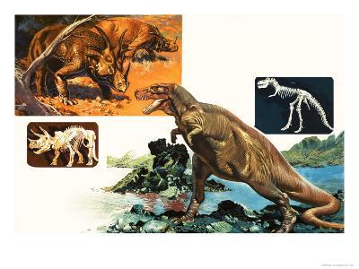 Dinosaurs and Skeletons. Stegasaurus and Tyranosaurus--Giclee Print