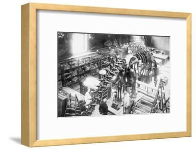 Diplodocus Dinosaur Being Assembled In Paris Museum