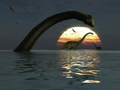 Diplodocus Dinosaurs Bathe in a Large Body of Water-Stocktrek Images-Photographic Print