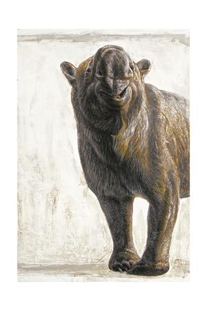 https://imgc.artprintimages.com/img/print/diprotodon-optatum-the-largest-known-marsupial-grewto-rhinoceros-size_u-l-pojlym0.jpg?p=0