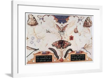Diptych with Flowers and Insects, 1591-Joris Hoefnagel-Framed Giclee Print
