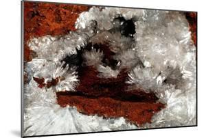 Gypsum Crystals by Dirk Wiersma