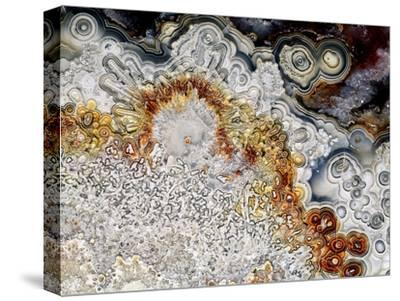 Polished 'crazy Lace' Agate by Dirk Wiersma
