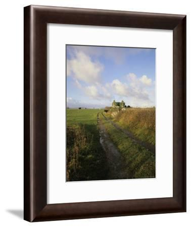 Dirt Road Leading to a Farmhouse on the West Coast of Ireland-Gina Martin-Framed Photographic Print