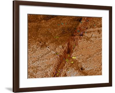 Dirty Chopping Board-Volker Steger-Framed Photographic Print