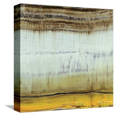 Dirty Rain-Grant Louwagie-Stretched Canvas Print