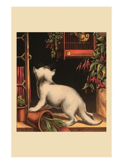 Disappointed Kitten--Art Print