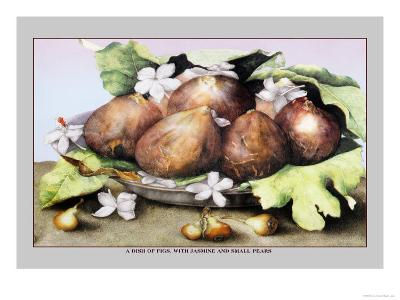 Dish of Figs with Jasmine and Small Pears-Giovanna Garzoni-Art Print