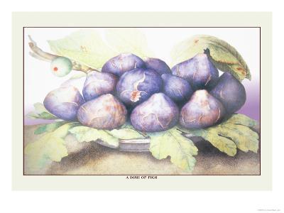 Dish of Figs-Giovanna Garzoni-Art Print