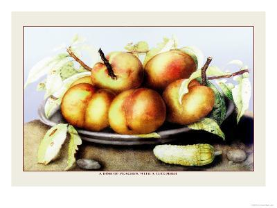 Dish of Peaches with a Cucumber-Giovanna Garzoni-Art Print