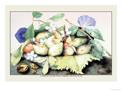 Dish of Plums with Jasmine and Walnuts-Giovanna Garzoni-Art Print