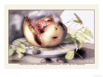 https://imgc.artprintimages.com/img/print/dish-with-a-pomegranate-a-grasshopper-a-snail-and-two-chestnuts_u-l-p291fo0.jpg?p=0