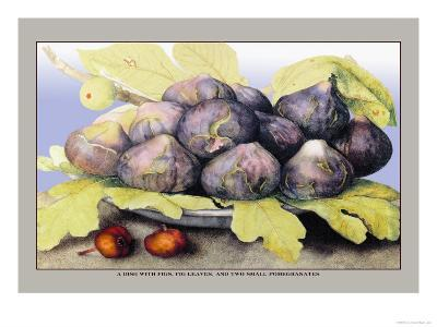 Dish with Figs, Fig Leaves and Small Pomegranates-Giovanna Garzoni-Art Print